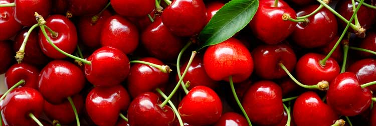 tart-montmorency-cherry-full-packed-of-antioxidant